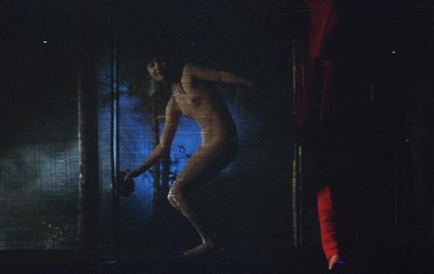 Kusa-meikyû (1979).jpg