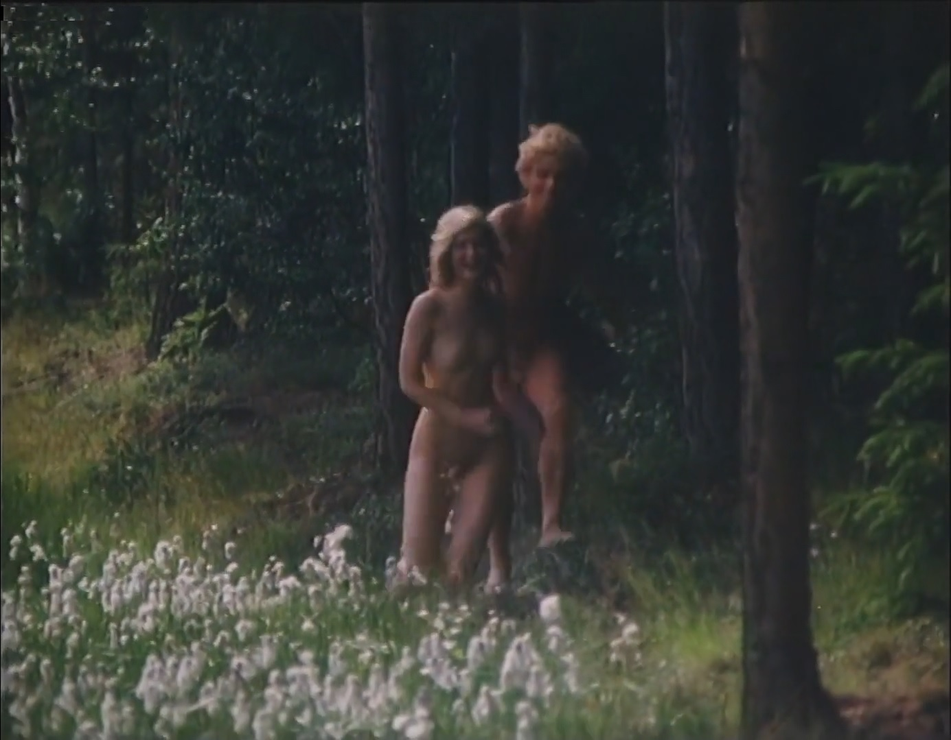 Brusten himmel (1982).jpg