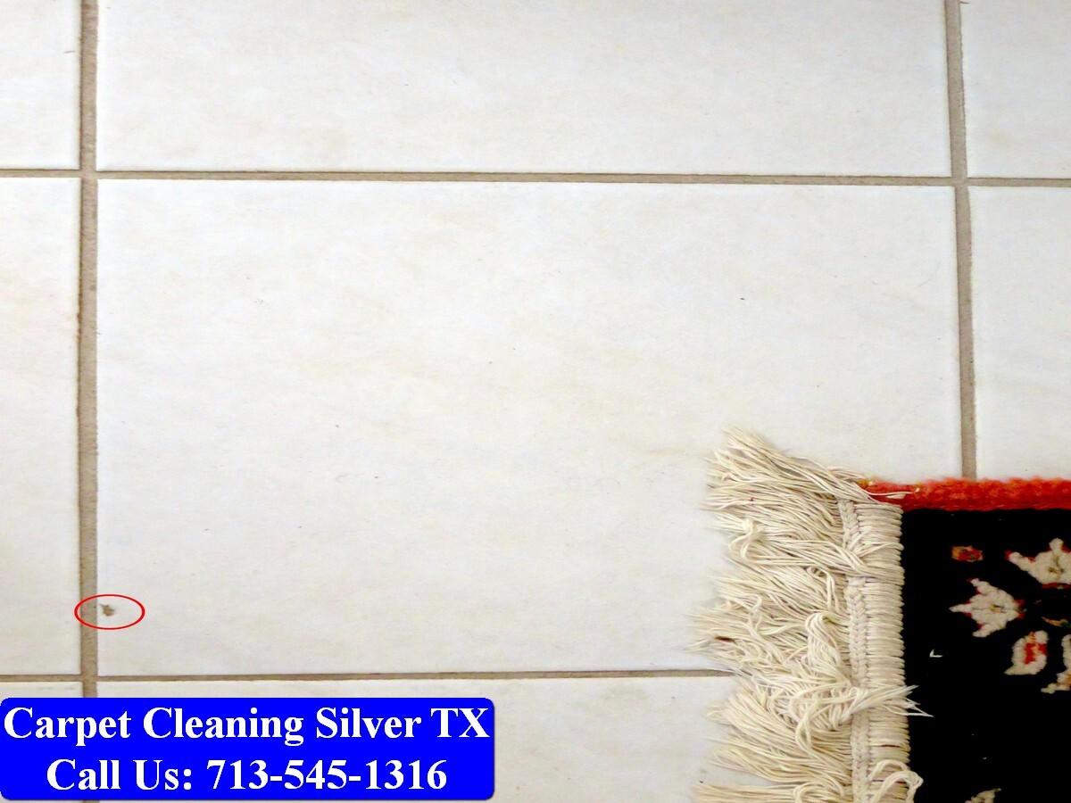 My Pro Cleaner TX-080.jpg