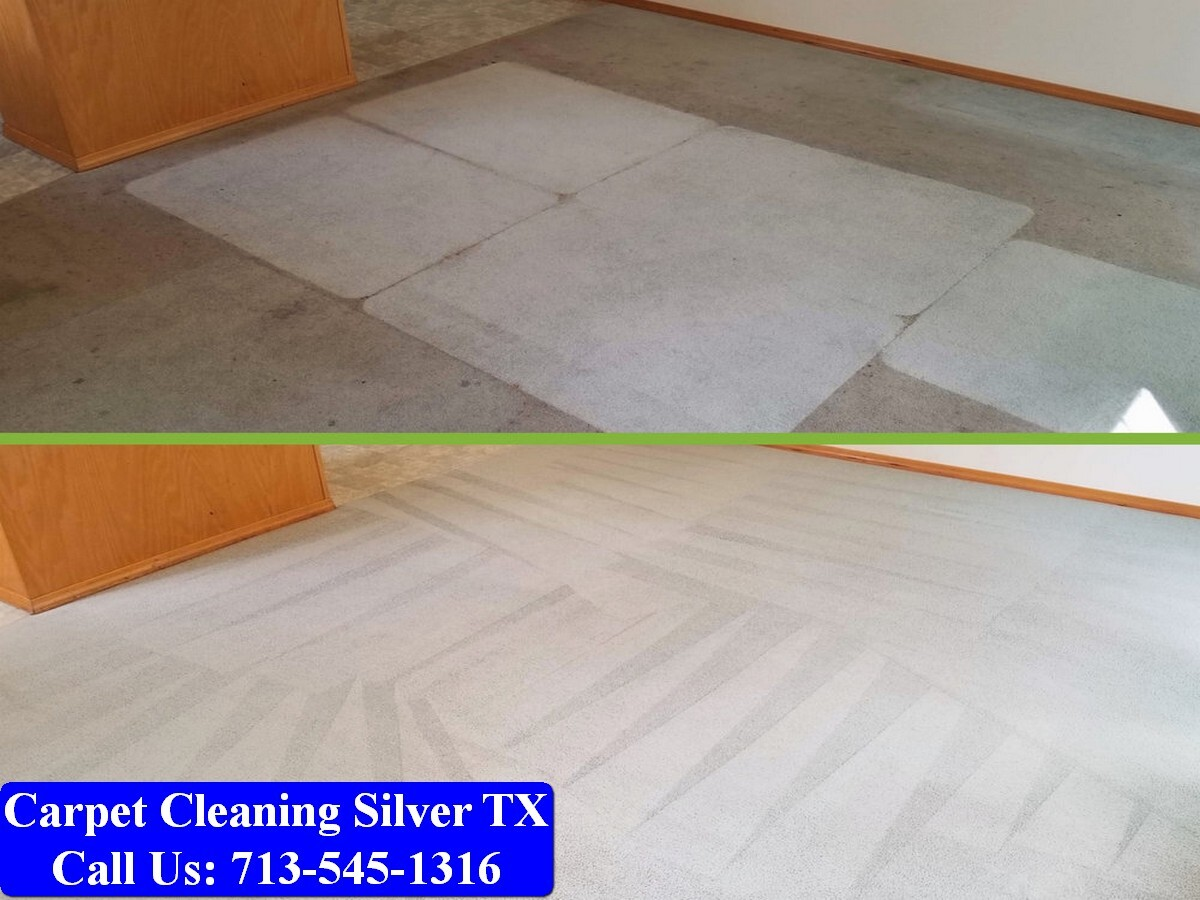My Pro Cleaner TX-087.jpg
